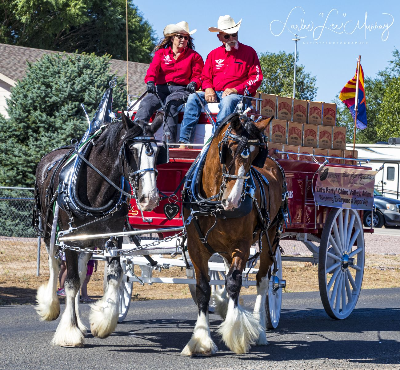 Local Territorial Days parade - my kind of transportation!
