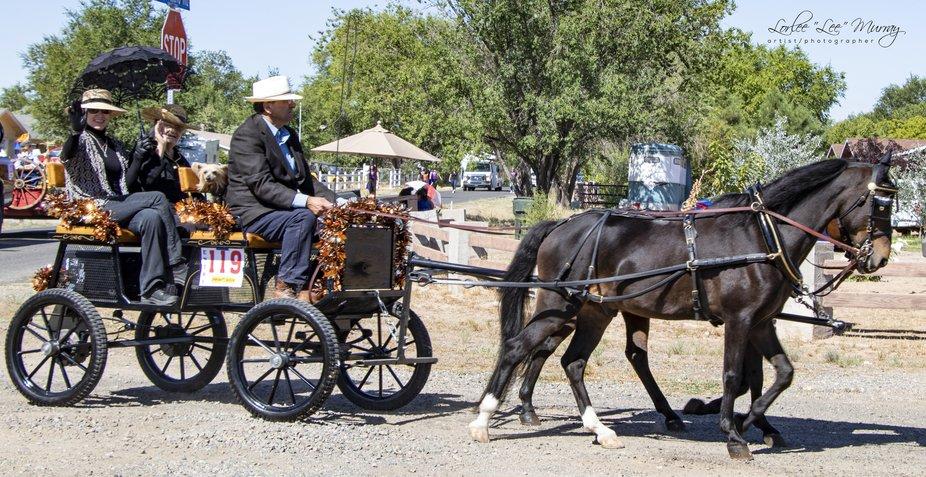 Territorial Days Parade - Chino Valley AZ