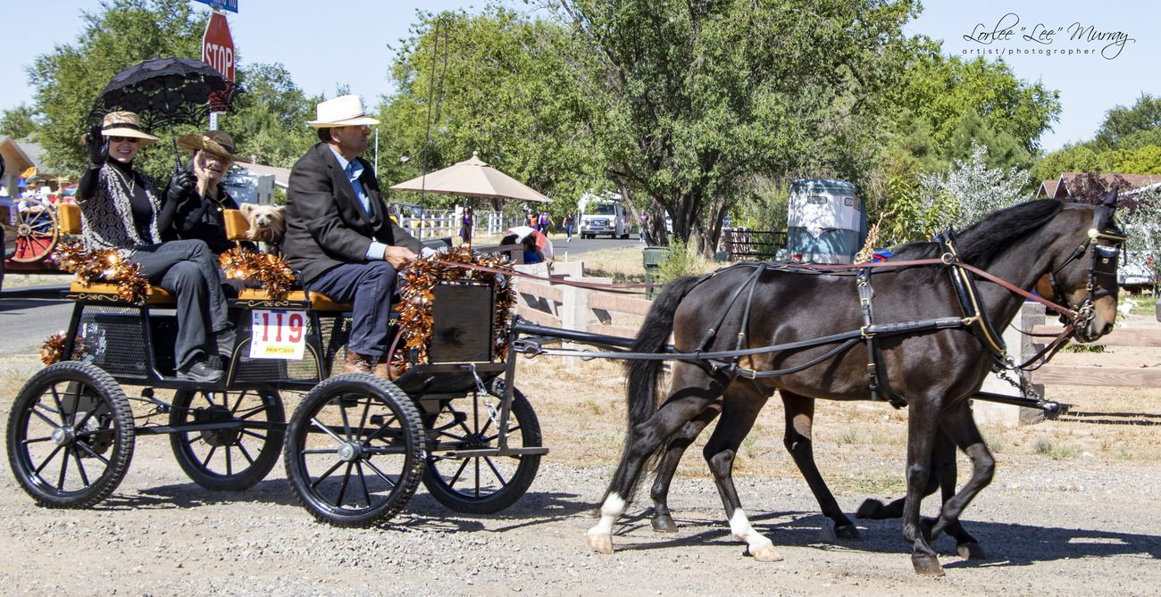 Territorial Days Parade - Chino Valley AZ