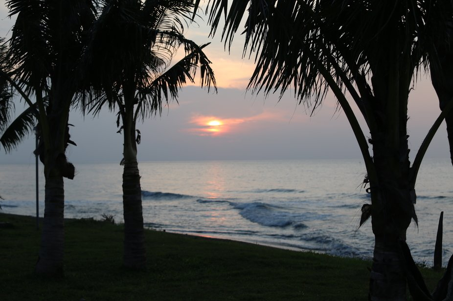 Sasa_Sunset