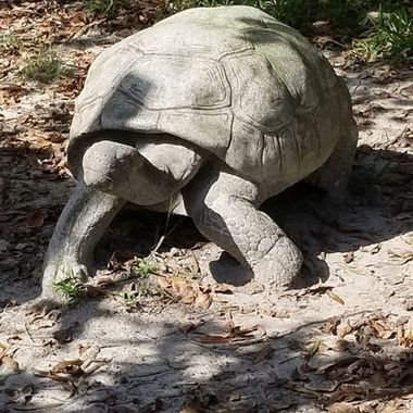 A statue of a turtle.
