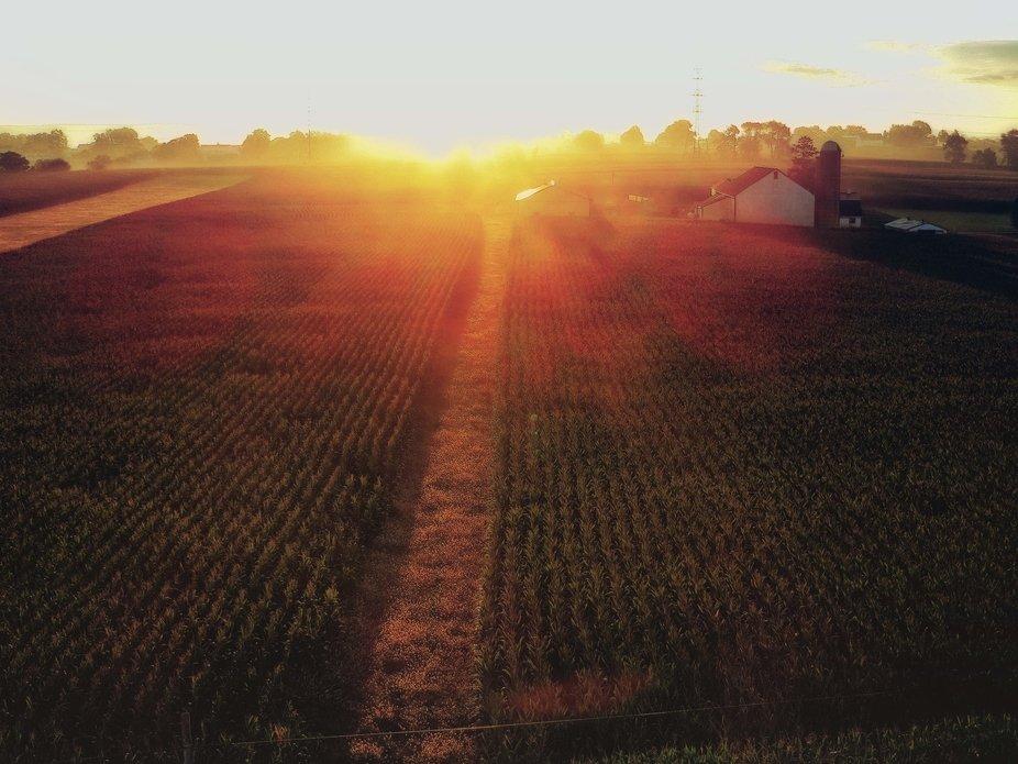 farmer's sunrise