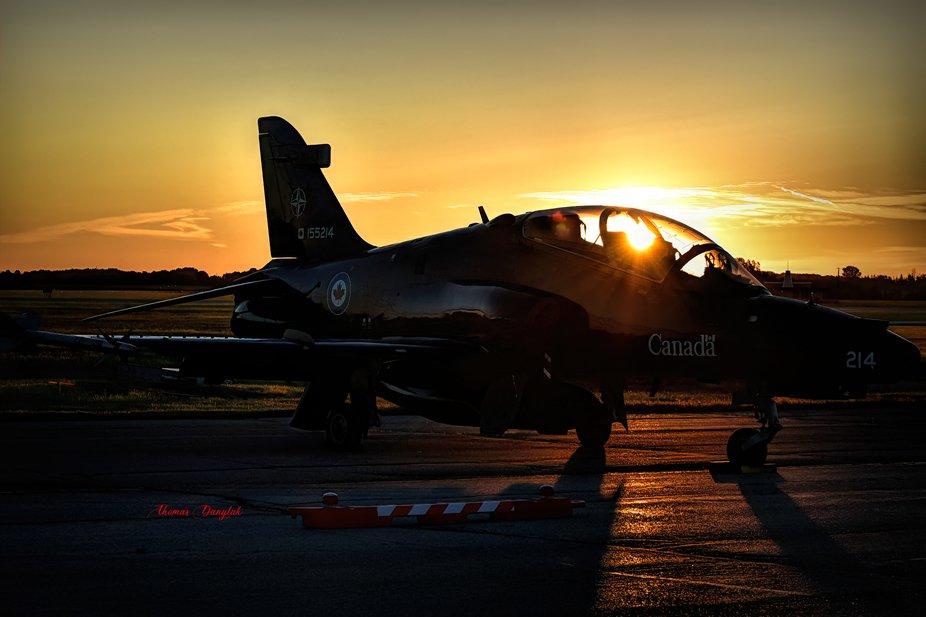 Hawk Sunrise