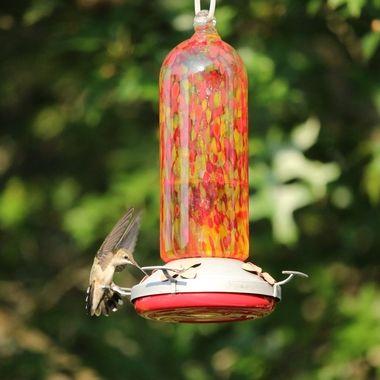Hummingbird Series Iii