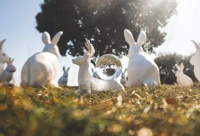 Bunnyhenge