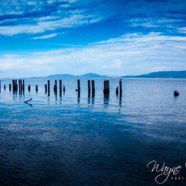 Posts near shore at Flathead Lake Montana.