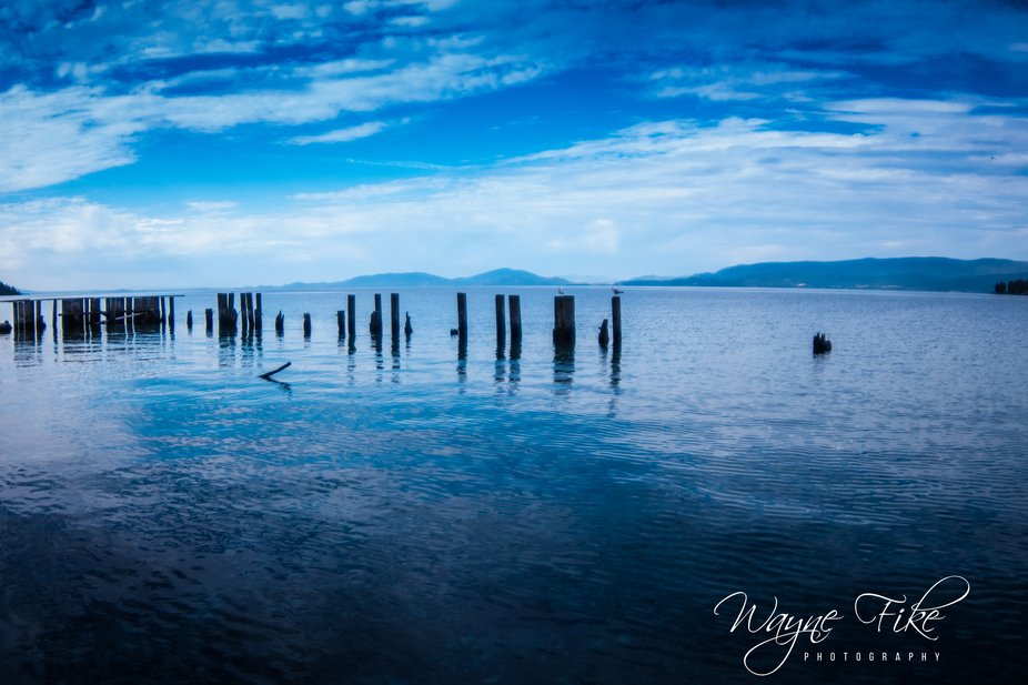 Posts near shore at Flathead Lake, Montana.