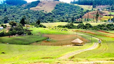 Colourful Canvas of Ooty Hills