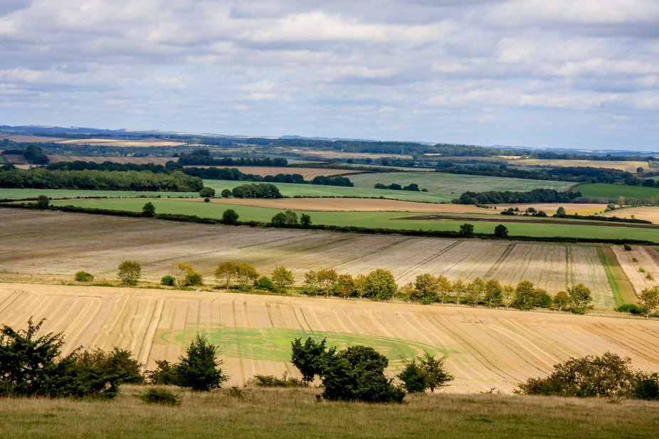 Scenic shot with the remnants of a crop circle in the foreground.
