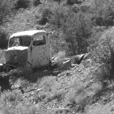 carlisle truck