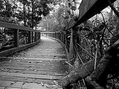 Dark walk way