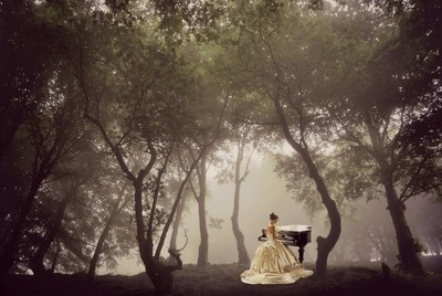Pianist in the forest