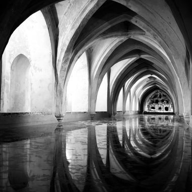 black and white arcs and their reflection
