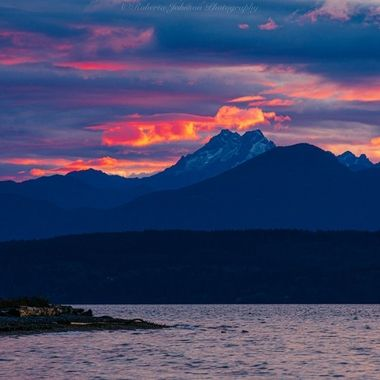 There was such an amazing glow to the sky last evening on Hood Canal. We sure are blessed with beauty in the PNW,
