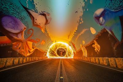 Oceanic portal