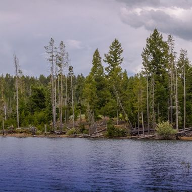 Panorama of Delmo Lake, Mt.   Many of my photos are for sale, please click over to my photography store and take a peek. I have something for just about anyone who loves nature.