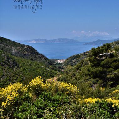 Sam2019 (165)_  Coastal Landscape.