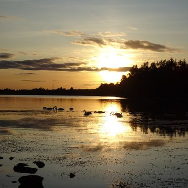 Local Loch sunset