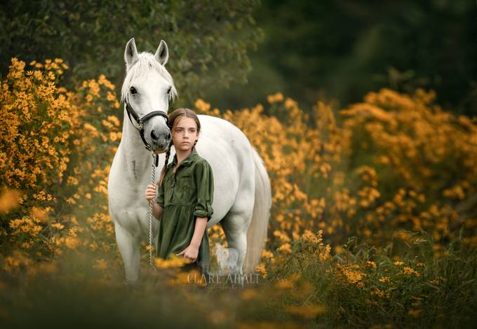 The end of summer by clareahalt - In Love With Horses Photo Contest