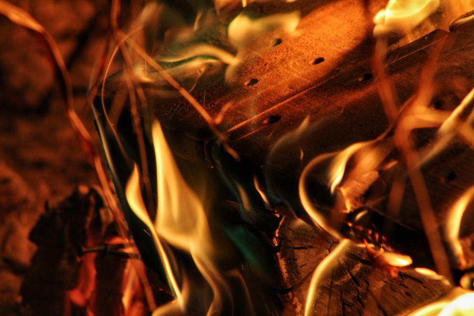 Wood burning in a fire