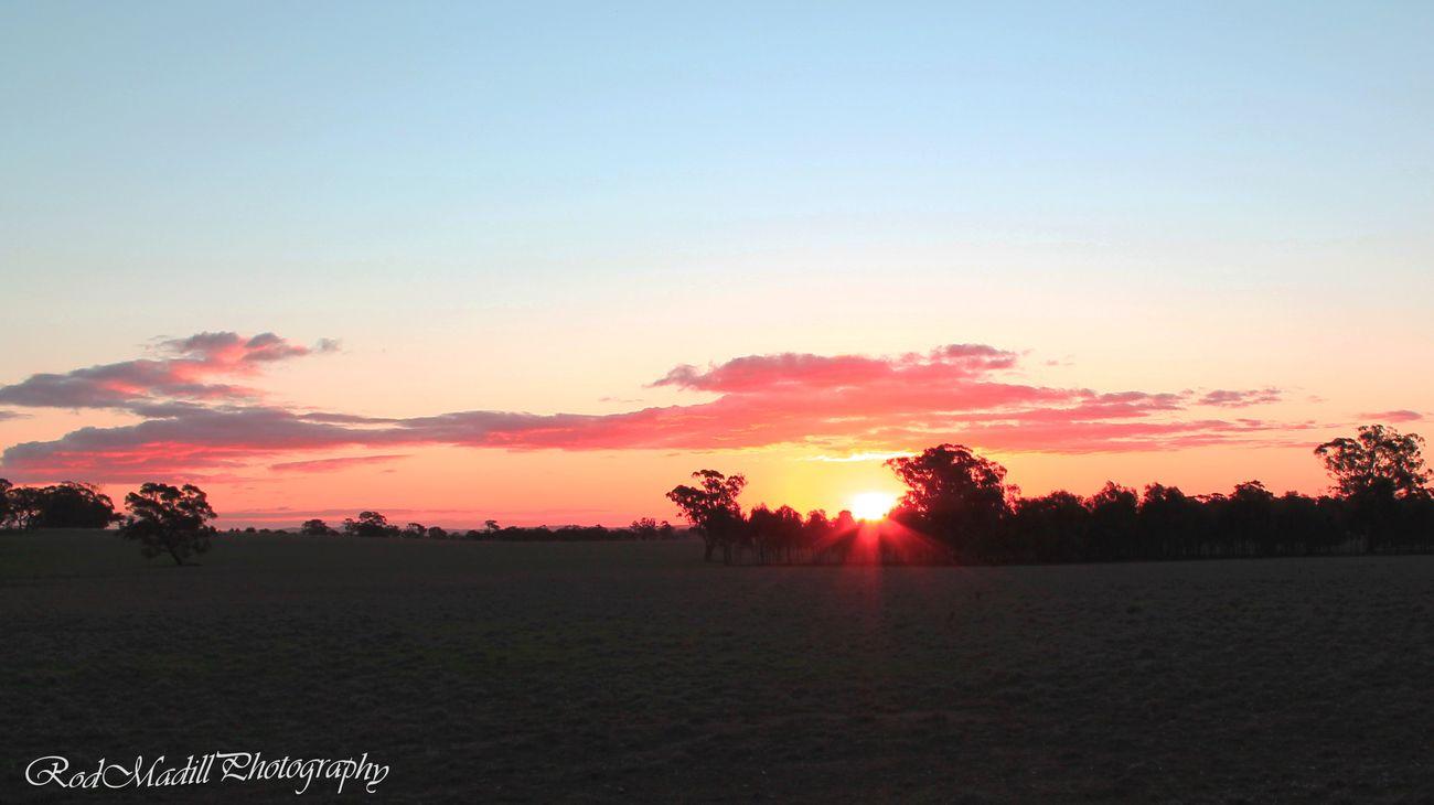 Sunset over a paddock near the Waranga Basin