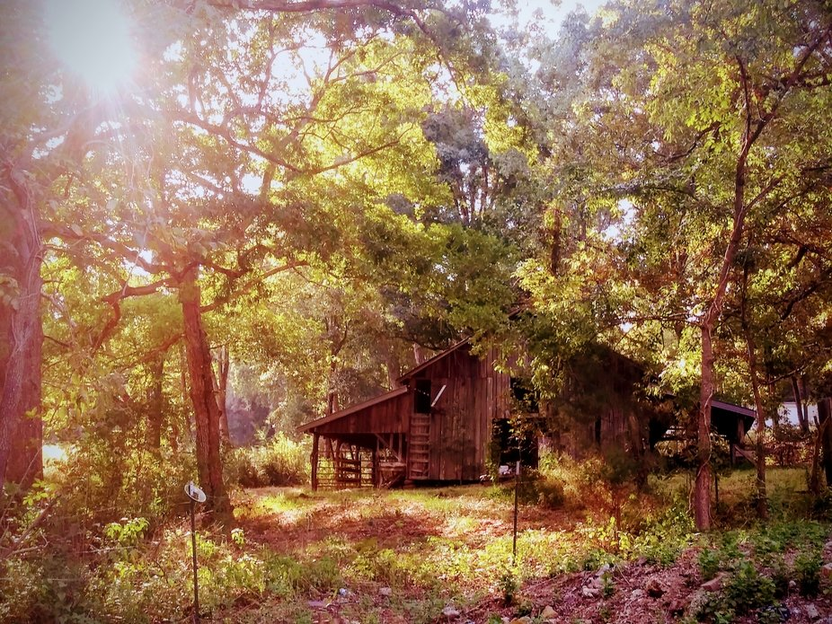 Barn was built in late 1800's and is still structurally sound . The wood on inside looks...