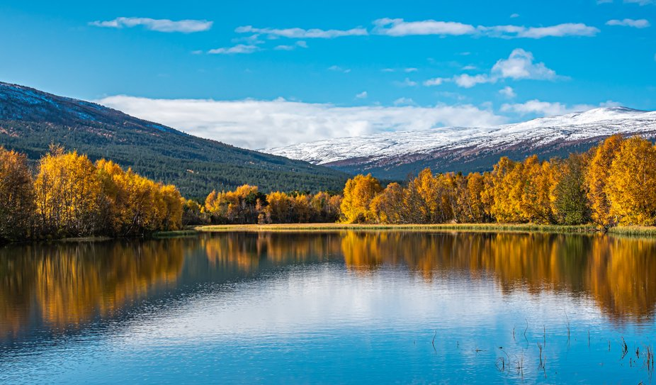 Lesja-Norway