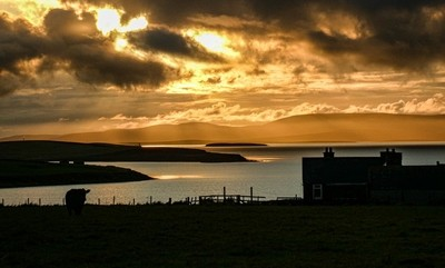 Orkney sunset  P1040599