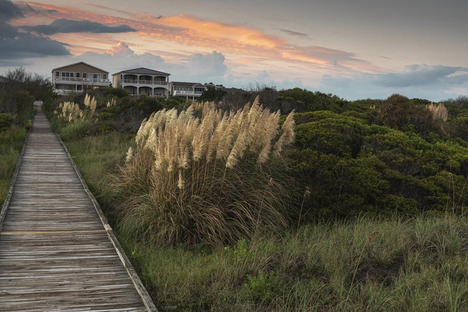 Sunset with marsh grass and boardwalk
