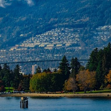 Coal Harbour. Haidi Gwaii ancestors used to commute back and forth from Hawaii, they also settled here.