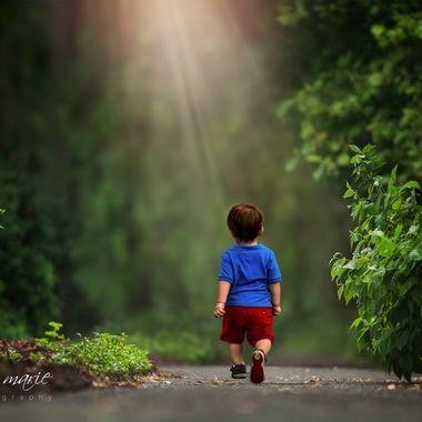 {Jax} Strolling Along