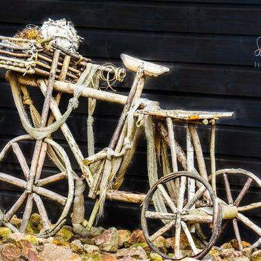 PPSau (39)  Bike.