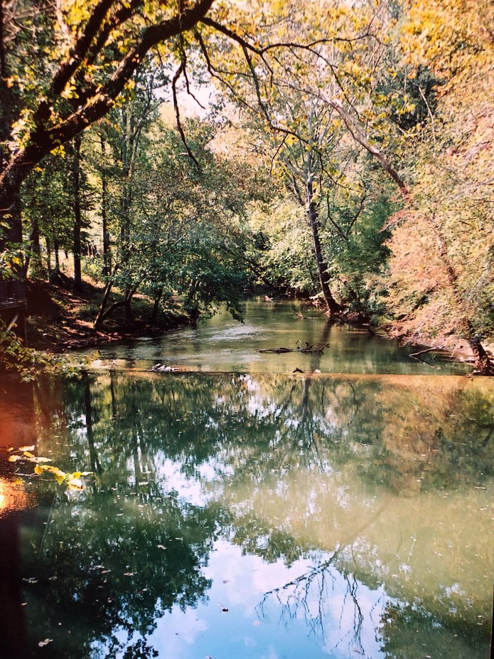 This is the water which feeds the Kymulga Grist Mill, Childersburg, Alabama—one of the few mills to survive Union scourges in the Civil War.