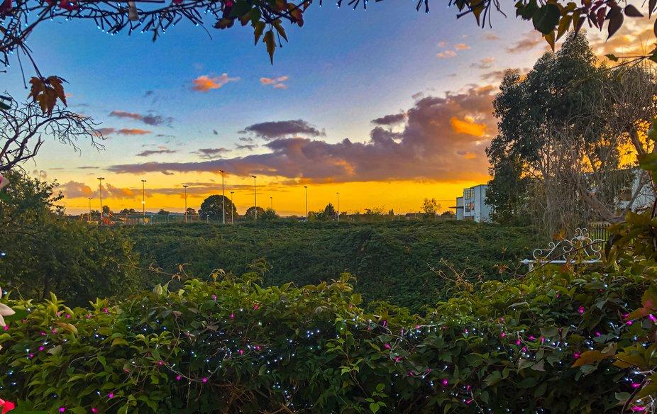 Open the door & I'm in Oz, Home sweet home. Beauty on my doorstep
