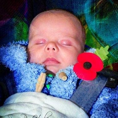 DSCF4615_pe   Poppy Baby.