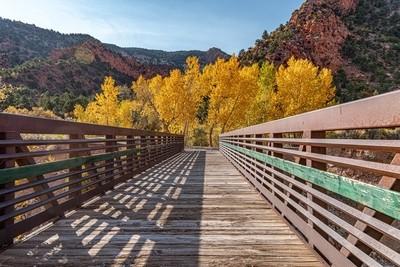 Bridge to fall colors