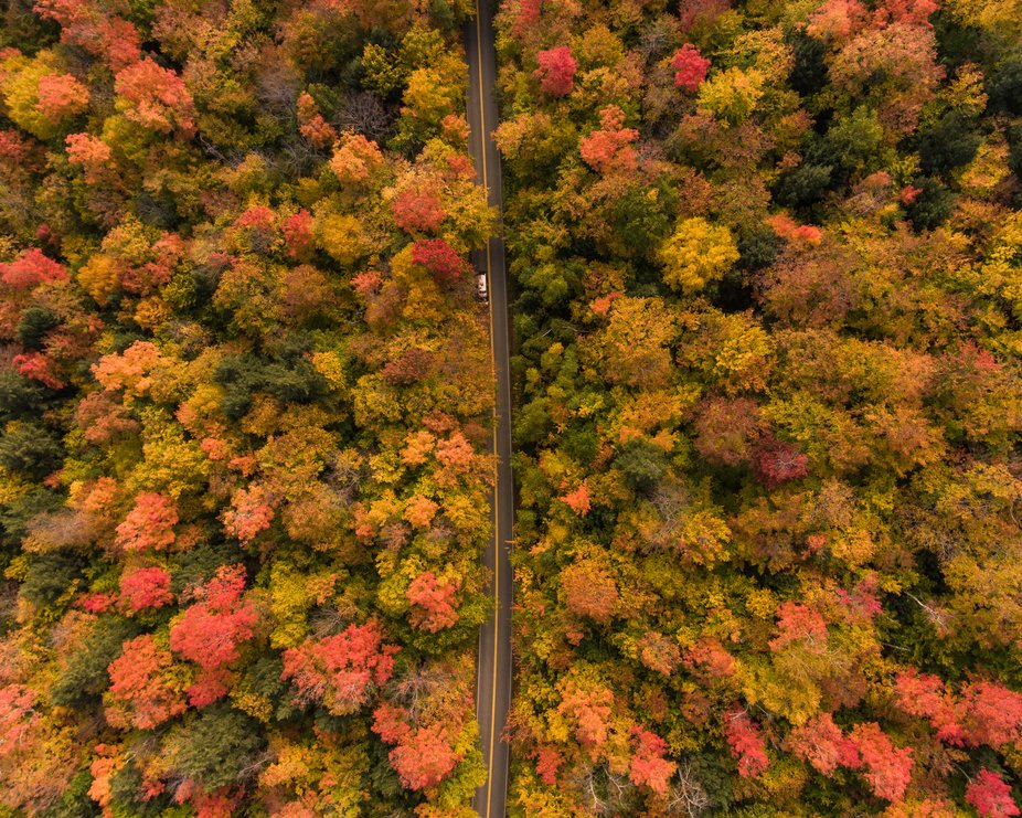 An Eagle eye view 400 hundred feet, in the White Mountains of New Hampshire, Autumn,