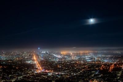 Moonlit Amazement