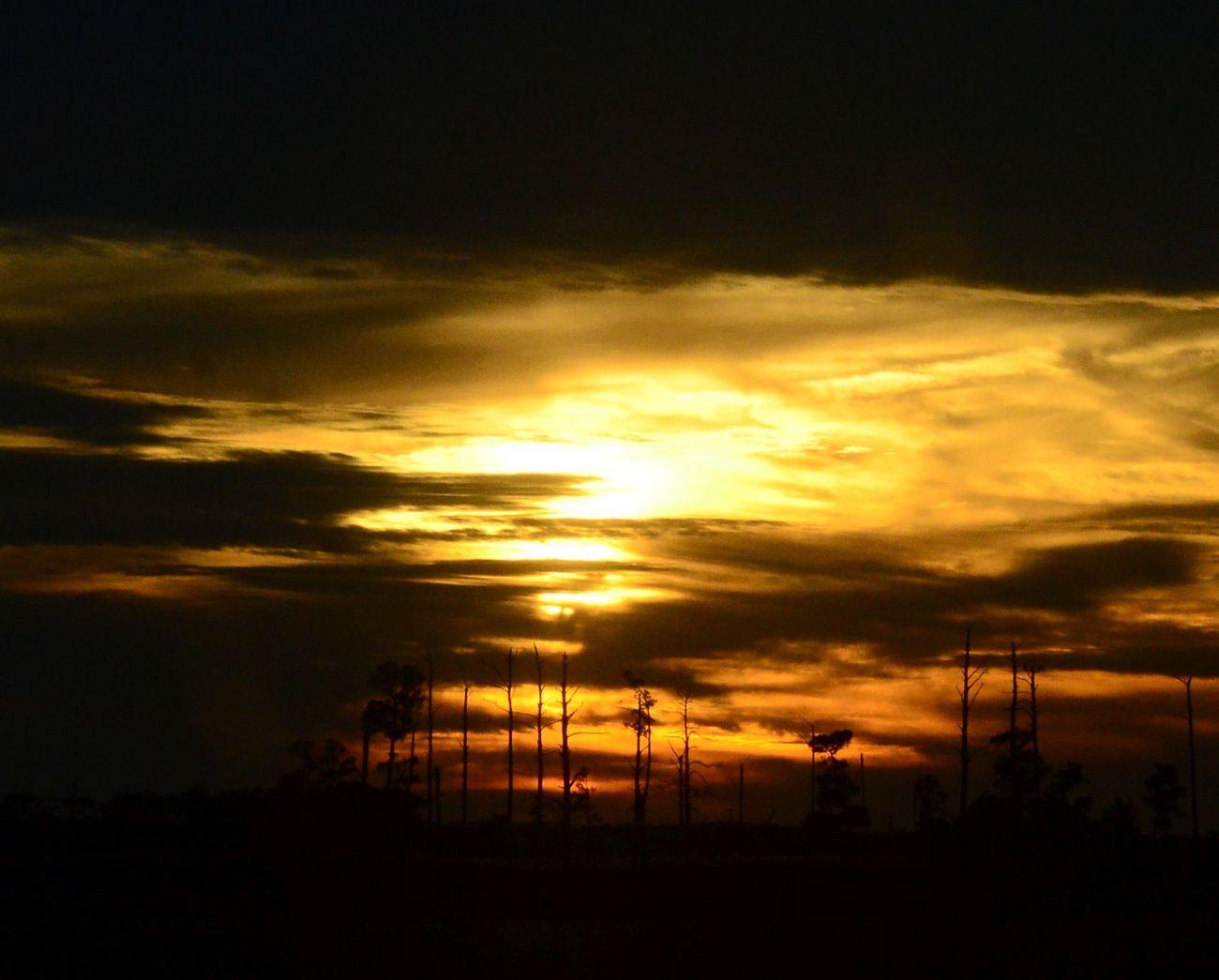 Sunset at Blackwater IV