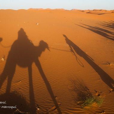 Sombras de una excursion en camello por el desierto del Sahara, en zona de Marruecos