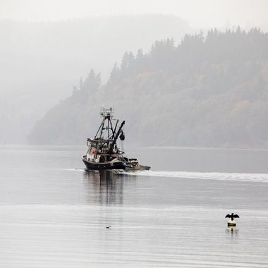 Seiner fishing boat with cormorant on a buoy.