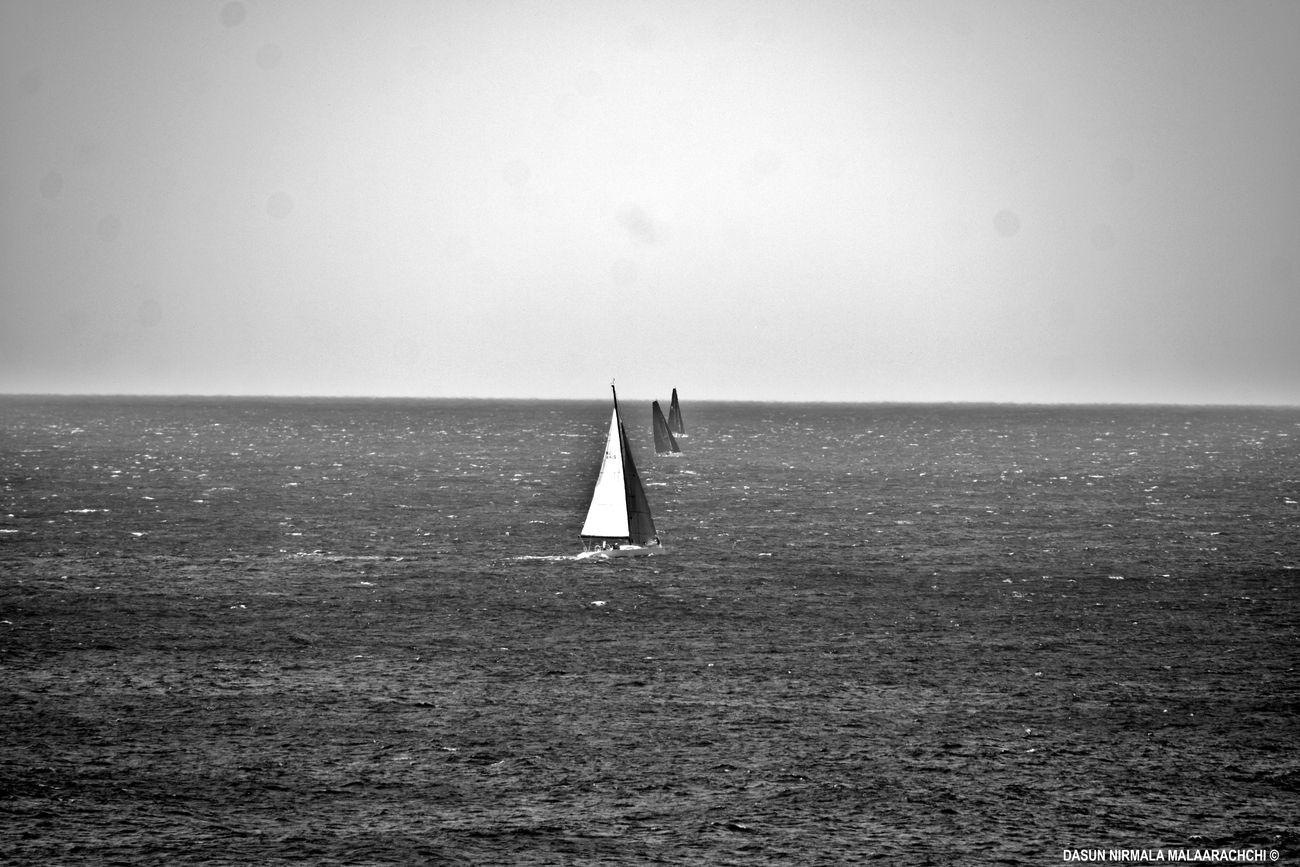 Sailing boats at Bondi