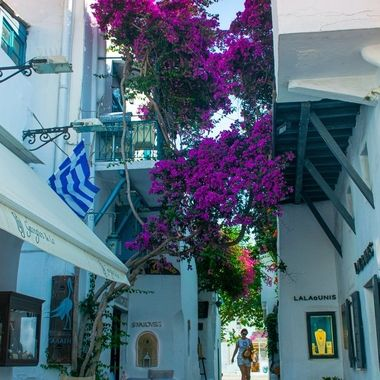 The streets of Mykonos, Greece