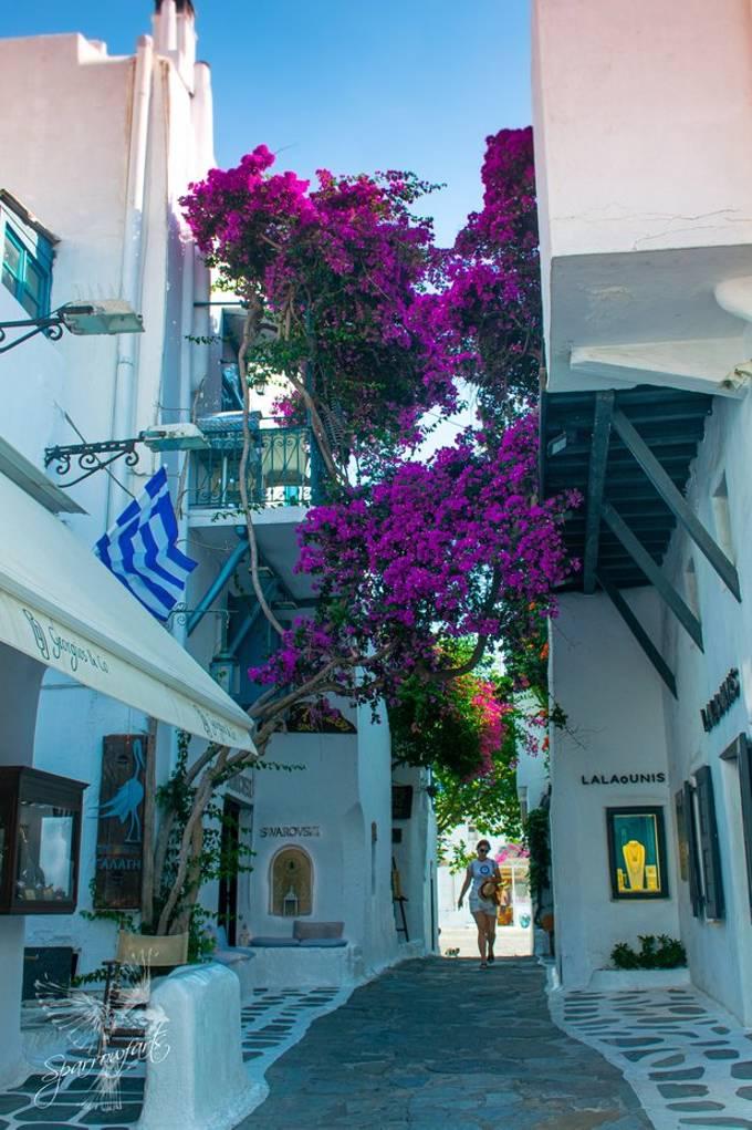 The streets of Mykonos, Greece