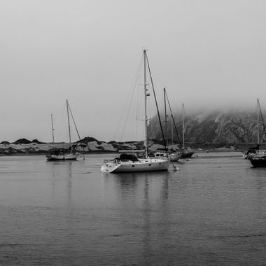 _MG_6908_Morro Bay_CA