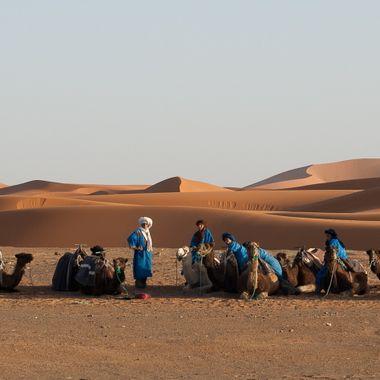 Grupo de Tuaregs con sus camellos que se dedican al transporte por el desierto de Merzouga (Marruecos)