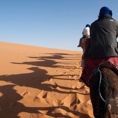 El camello es el transporte no mecanico mas popular en el desierto del Sahara.