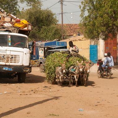 En algunas zonas rurales de Senegal, pueden encontrarse esta diversidad de transporte de mercancias.