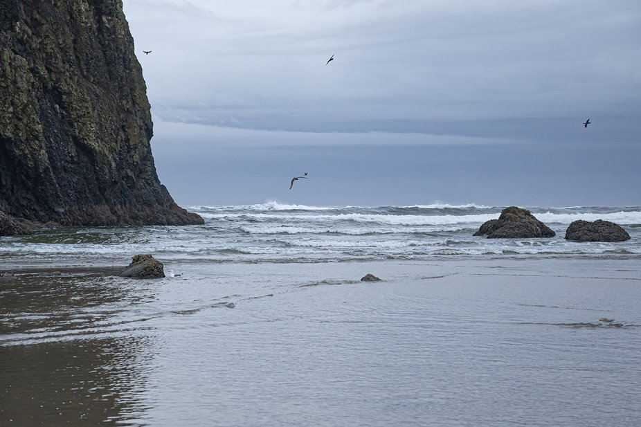 _RHC1797 cannon beach Oregon