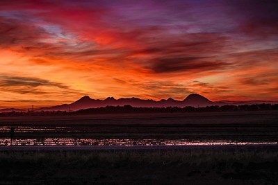 The Sutter Buttes at Sunset.